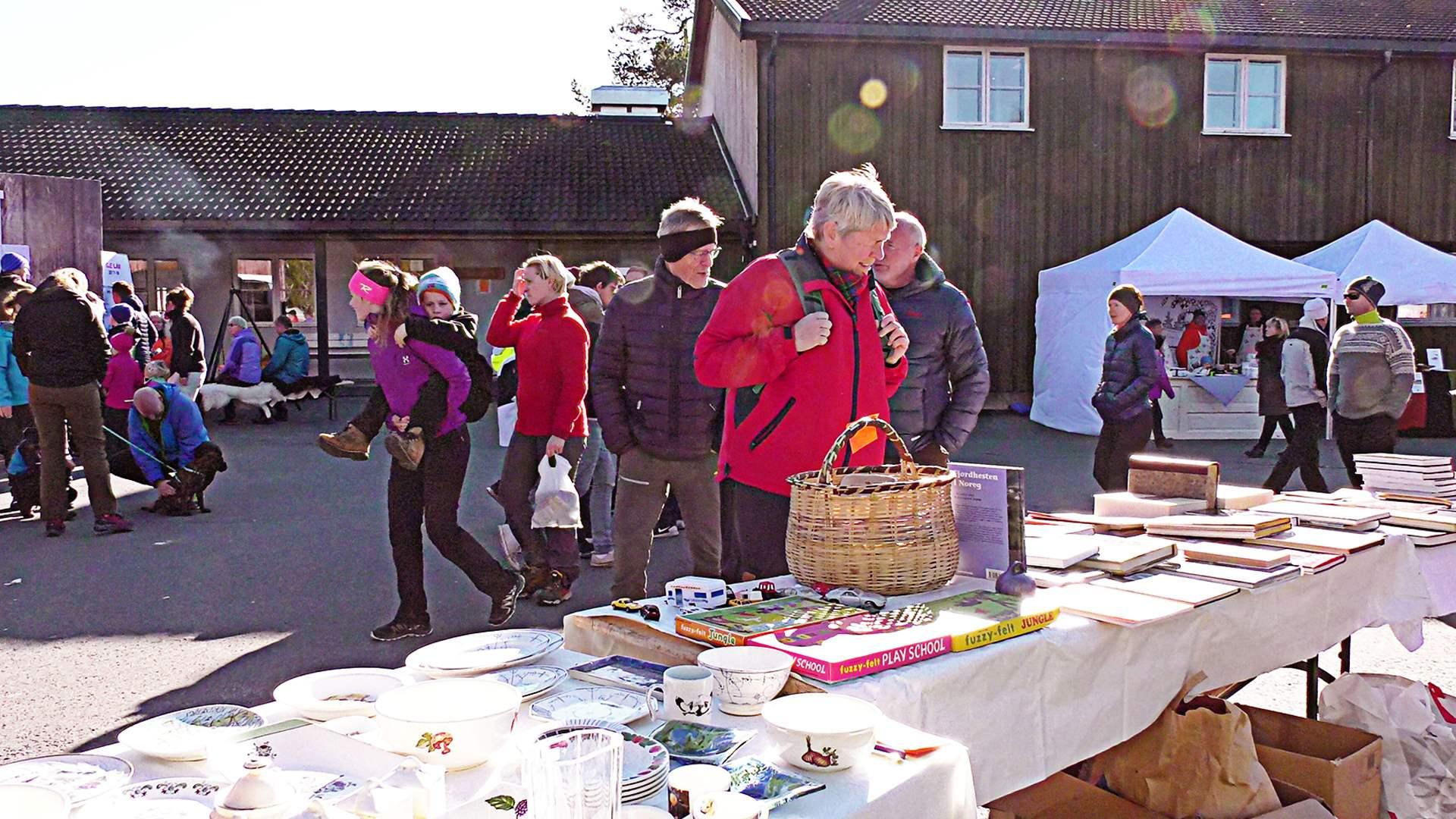 Høstfest og handlegate i Rauland sentrum (Foto: Danny Seterdal)